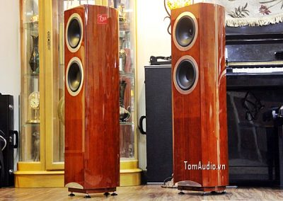 Tannoy DC8T Definition